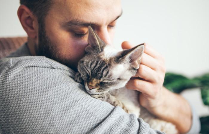 Touch a pet